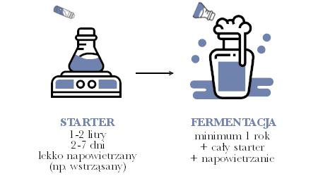Fermentacja mieszana zbakteriami schemat