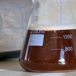 Kolba Erlenmeyera z ekstraktem słodowym zalana wrzątkiem. Jak widać, na tym etapie ekstrakt nie jest jeszcze idealnie wymieszany, co zmieni się po gotowaniu.